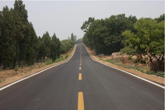 ⼲塘村精品园产业道路